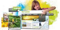 Criação de Sites Profissionais para Empresas e Organizações